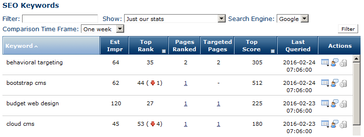 Search Engine Result Page (SERP) Tracking