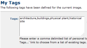 Contributor Tags Feature Thumbnail