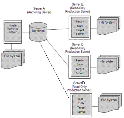 Authoring and Production Servers